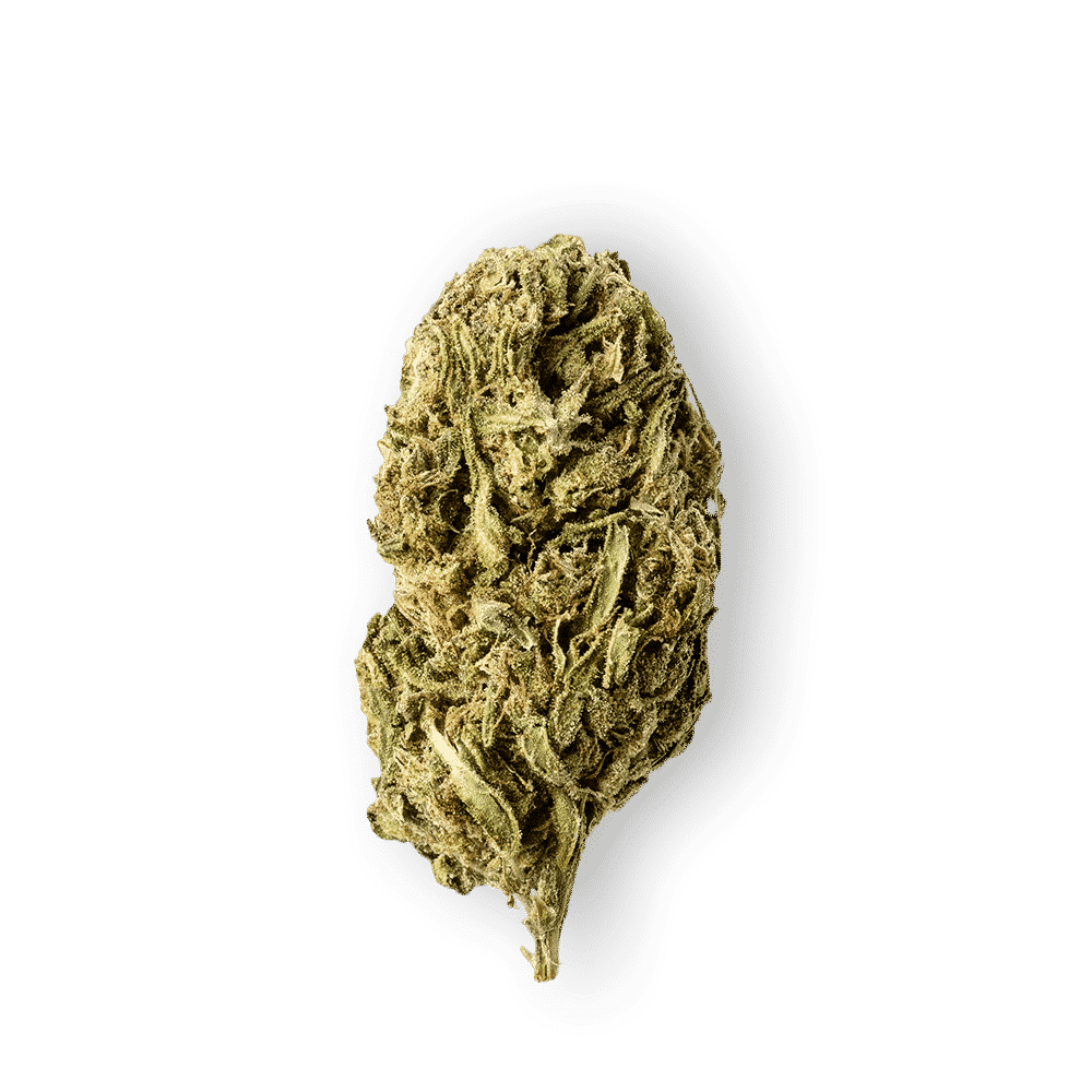 Green Passion ~ Alpina Green (Outdoor) ~ 5g